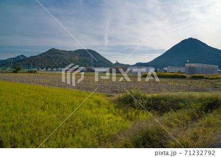 三上山(近江富士)(右)と妙光寺山(左) 71232792