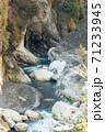 自然 天然 ナチュラル 71233945