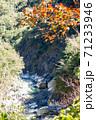 景色 風景 楓 71233946