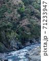 自然 天然 ナチュラル 71233947