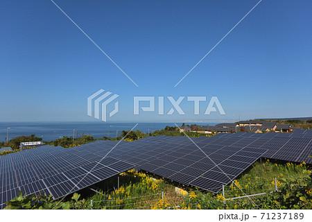 太陽光発電所 海の見える高台に設置された太陽光パネル 71237189