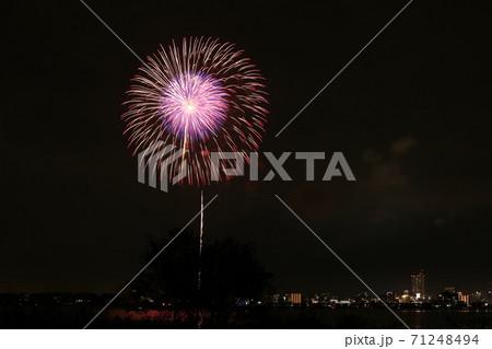 湖面から夜空に打ちあがる大きな紫花火 71248494