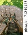 木の階段を上る女の子 71249126