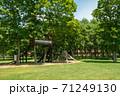 公園の風景 71249130