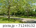 公園風景 71249132