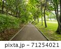 公園の遊歩道 71254021