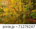 世界遺産白神山地の秋 紅葉の十二湖 2019_147 王池 71276287
