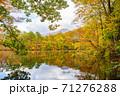 世界遺産白神山地の秋 紅葉の十二湖 2019_148 王池 71276288