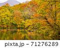 世界遺産白神山地の秋 紅葉の十二湖 2019_149 王池 71276289
