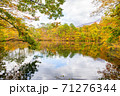 世界遺産白神山地の秋 紅葉の十二湖 2019_151 王池 71276344