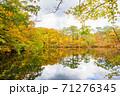 世界遺産白神山地の秋 紅葉の十二湖 2019_152 王池 71276345