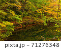 世界遺産白神山地の秋 紅葉の十二湖 2019_155 王池 71276348