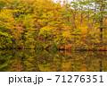 世界遺産白神山地の秋 紅葉の十二湖 2019_158 王池 71276351