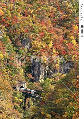 紅葉の鳴子峡(陸羽東線) 71280993