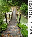 新緑の渓谷にかかるつり橋 71288633