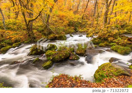 《青森県》秋の奥入瀬渓流・紅葉と清流 71322072