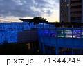 【大阪なんば】なんばパークスのイルミネーション【トワイライト】 71344248