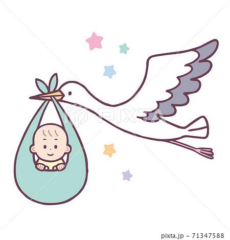 赤ちゃんを運ぶコウノトリ 71347588