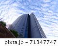 【記事素材に】都会の青空【ビジネス】 71347747