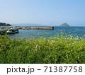 大泊港と津久見島 (大分県臼杵市) 71387758