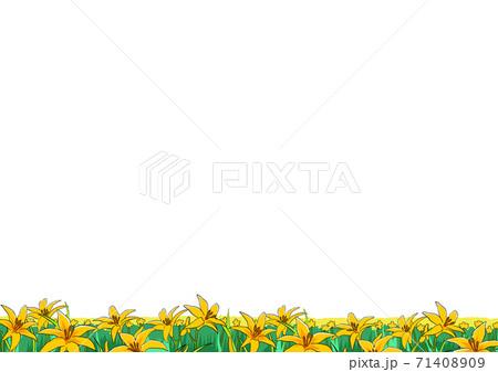 ニッコウキスゲの花畑 71408909