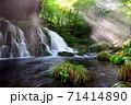 清々しい朝の元滝伏流水 秋田県 71414890