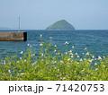 臼杵市の春景色 大泊港から見える津久見島 (大分県) 71420753
