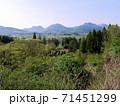 飯田高原と九重連山の春景色 (大分県九重町) 71451299