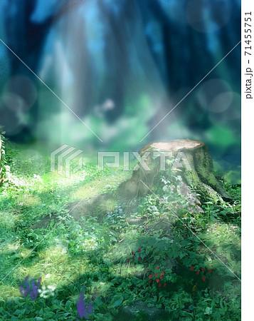 洋風庭園と切り株と夏の日の木漏れ日が美しい風景画 71455751