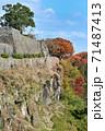 岡城 城壁と紅葉 71487413