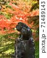 紅葉を見上げる狛犬 71489143