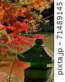 紅葉にはえる灯篭 71489145