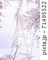 満開の桜と送電塔【色鉛筆】 71495522