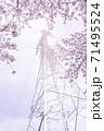 満開の桜と送電塔【色鉛筆】 71495524