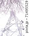 満開の桜と送電塔【色鉛筆】 71495529