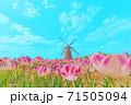 [アニメ風] 日本の春 佐倉のチューリップ畑 71505094