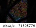 秋の風情 71505779