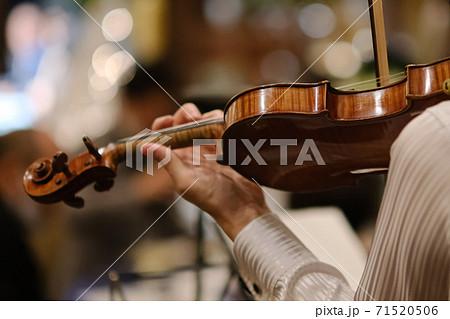 バイオリン奏者 71520506