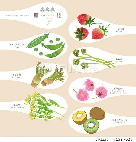薬膳 / 漢方食材 / ひとさじイラスト-7 71537929
