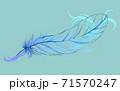 透ける羽と装飾模様 71570247