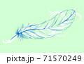 透ける羽と装飾模様 71570249
