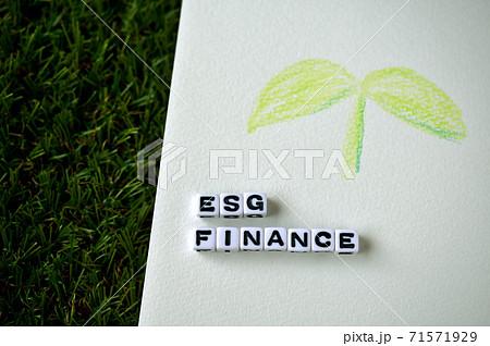 ESG FINANCEという文字列にアルファベットビーズで並べてある。双葉のイラストに添えて。 71571929