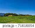 三重県いなべ市 北勢線の黄色い電車と赤い彼岸花 71616054
