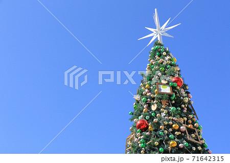 青空とクリスマスツリー 71642315