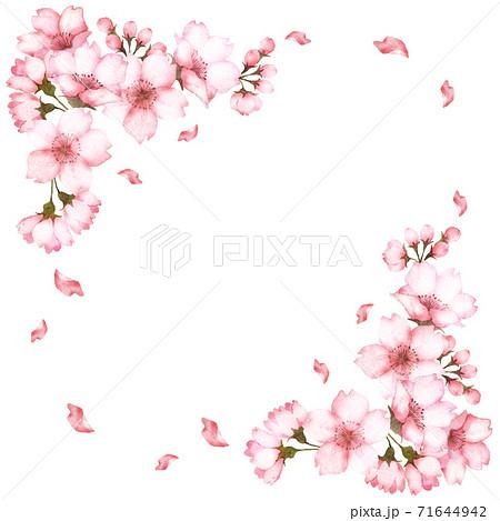 水彩の桜の花フレーム 71644942