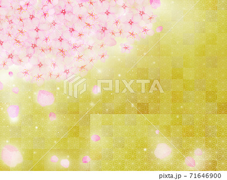 満開の桜が金箔を背景に花びらを散らしながら咲いている日本画風年賀正月背景イラスト 71646900