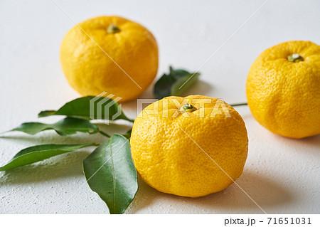 柚子 71651031