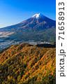 紅葉の三ッ峠と霊峰 富士山 山梨 71658913