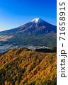紅葉の三ッ峠と霊峰 富士山 山梨 71658915