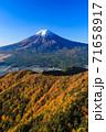 紅葉の三ッ峠と霊峰 富士山 山梨 71658917